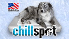Chillspot Dog Cooling Station $199.00