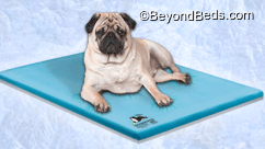 Canine Cooler® Dog Cooling Bed