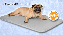 Cool Bed III™ Dog Cooling Bed